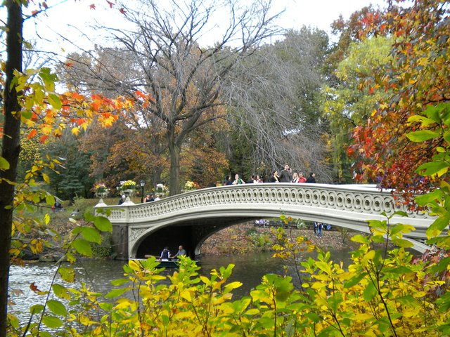 A bridge in Central Park