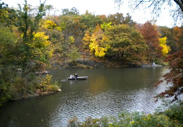 Boat Ride through Central Park