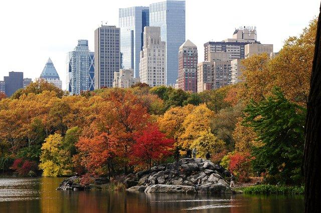 Autumn - NYC Style