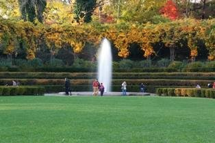 Afternoon at the Conservatory Garden