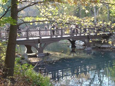 Bridge in Rambles
