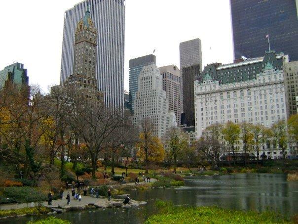 Central Park - November