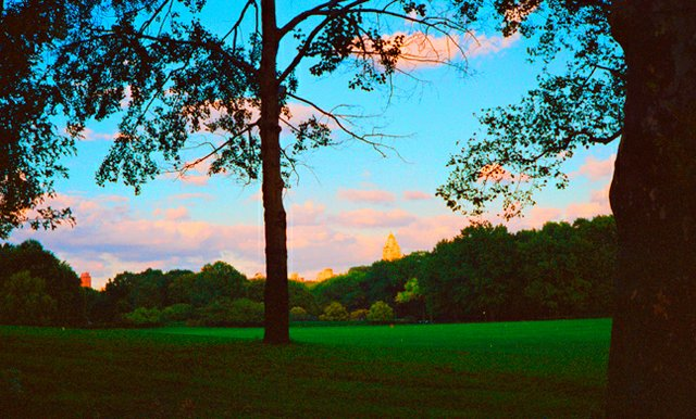 Sheep's Meadow Sunset