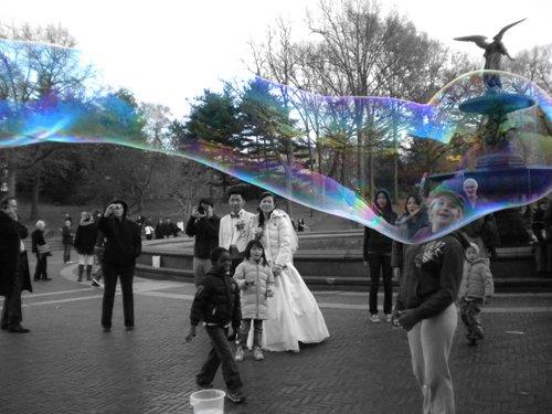 Central Park Bubble
