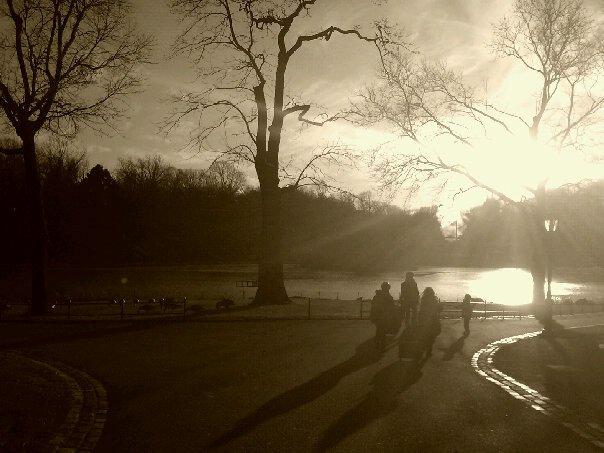 Central Park Beauty