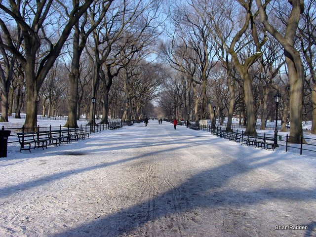 The Mall in Winter