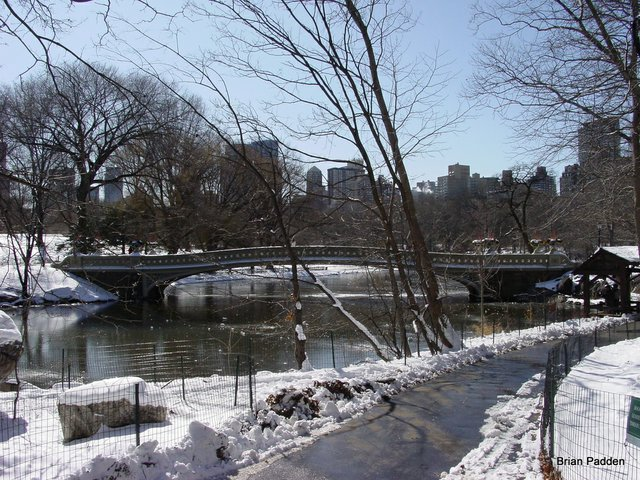 Bow Bridge in Winter