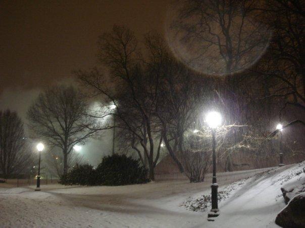 Snow lights on Central Park road