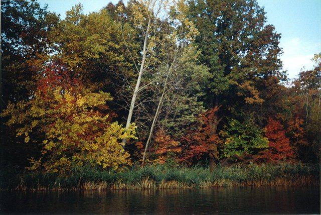 Rite of Passage in Seasons