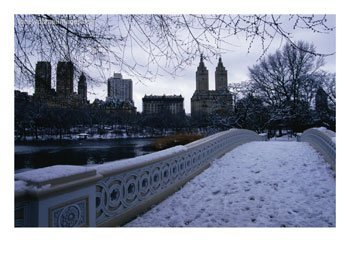 Central Park In Winter, plain and simple..
