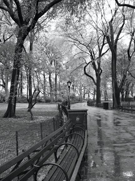 Central Park in May