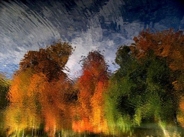 Autumn Reflections in The Pool