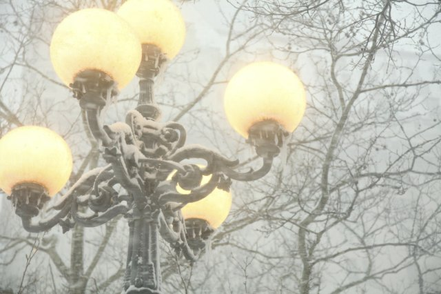 Globes in the Snow