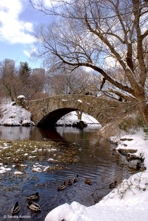 Romantic Central Park