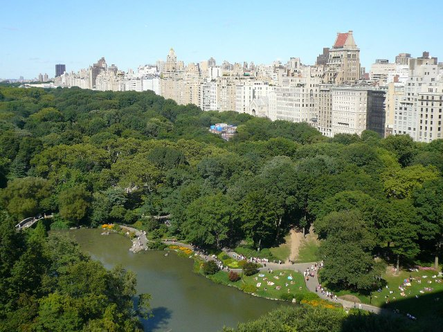 Central Park from the 26th floor