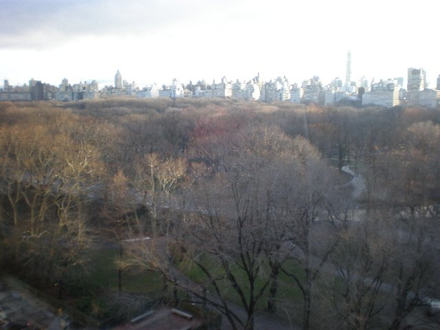 Central Park from Trump International