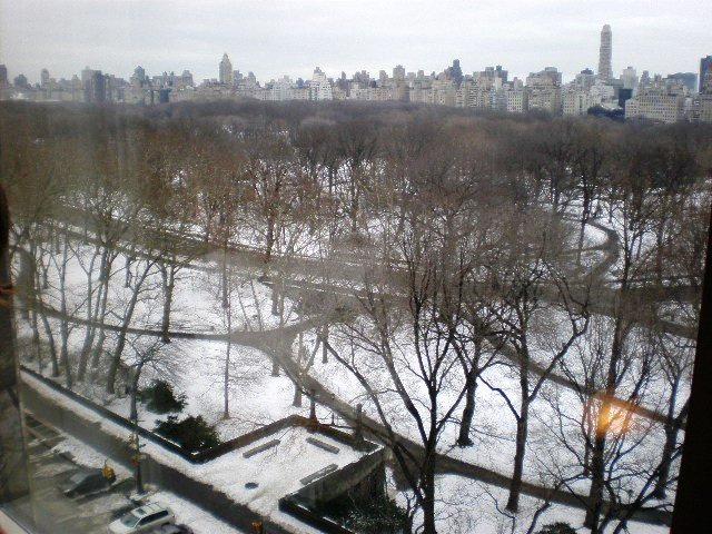 Central Park at a snow time!
