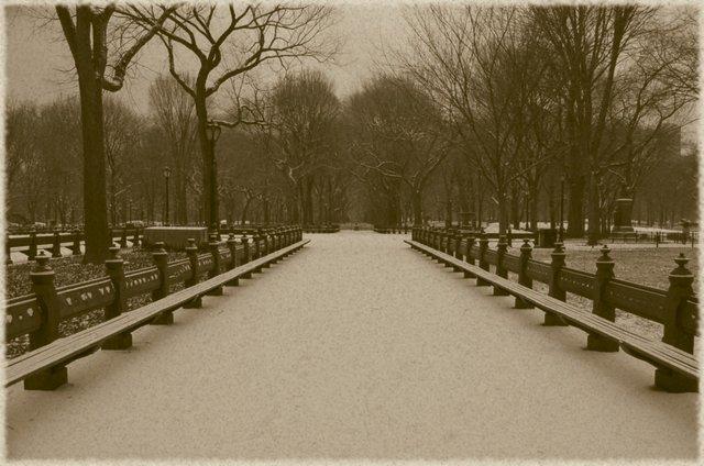 Classic Central Park