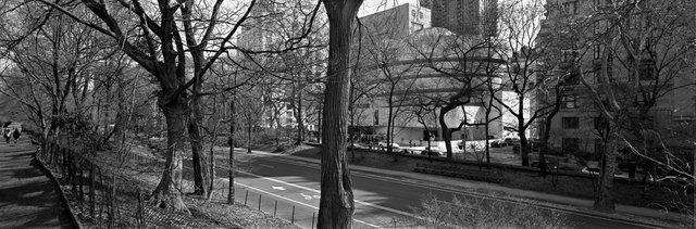 Guggenheim museum from the park