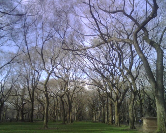 The Mall in early Spring