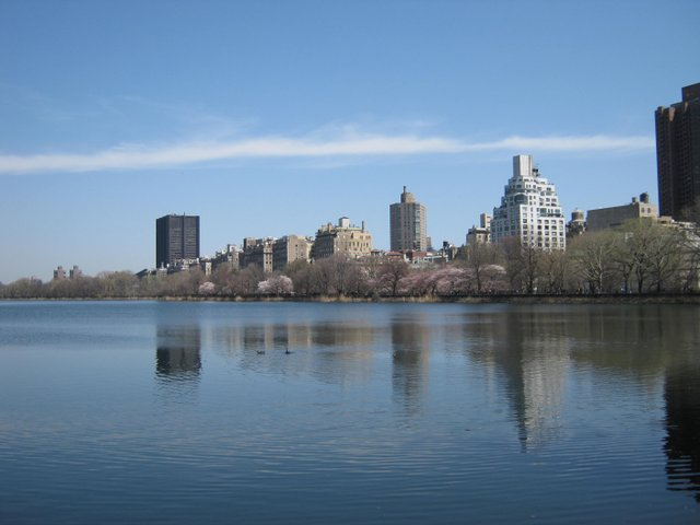 View across Jackie Onassis Reservoir