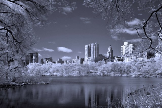 Springtime in Infrared