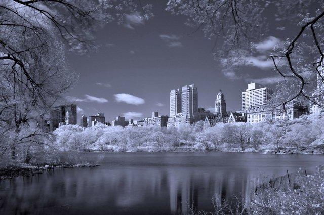 Springtime in Infrared
