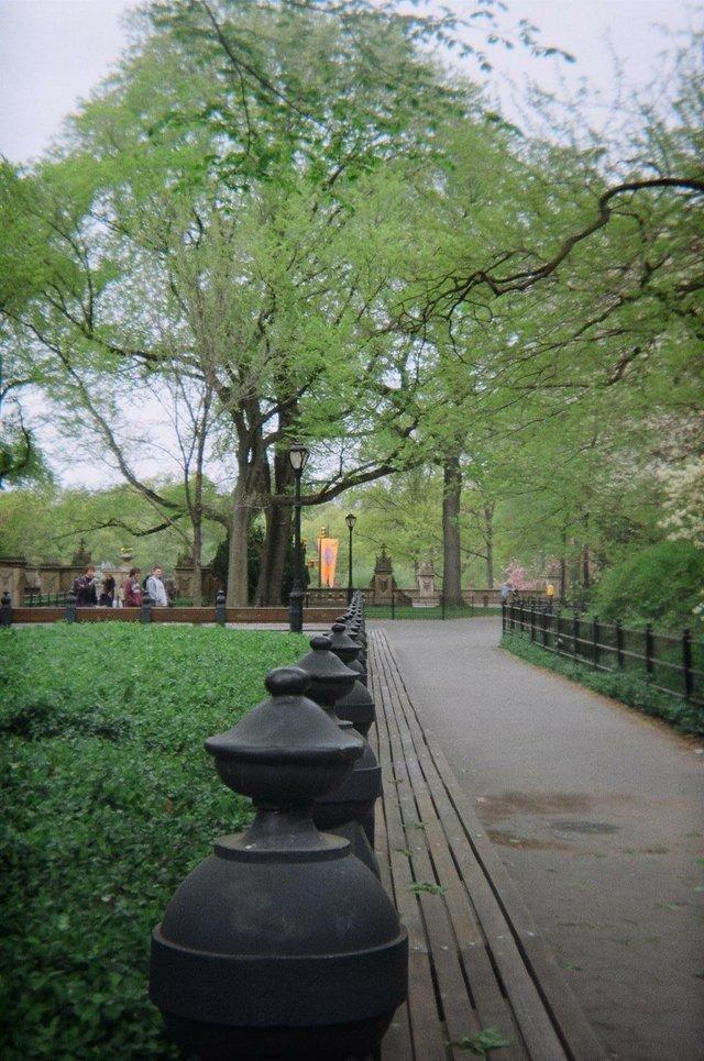 First time visit Central Park
