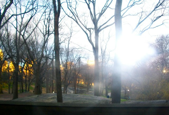 Early Spring Morning