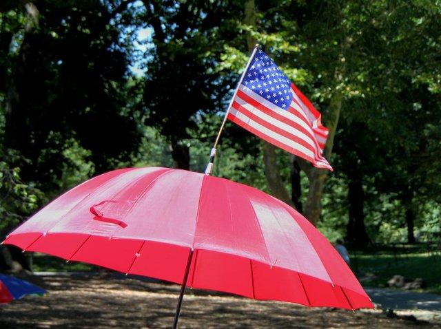Demonstration of patriotism on a hot summer day in Central Park