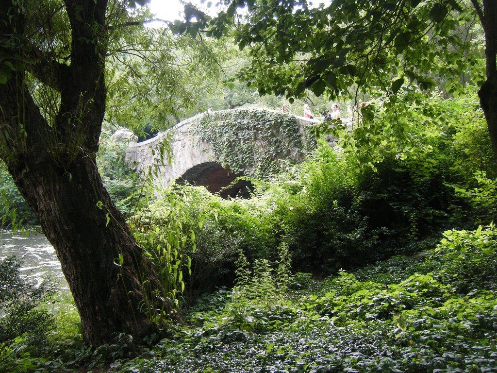 Photo entry: The Bridge