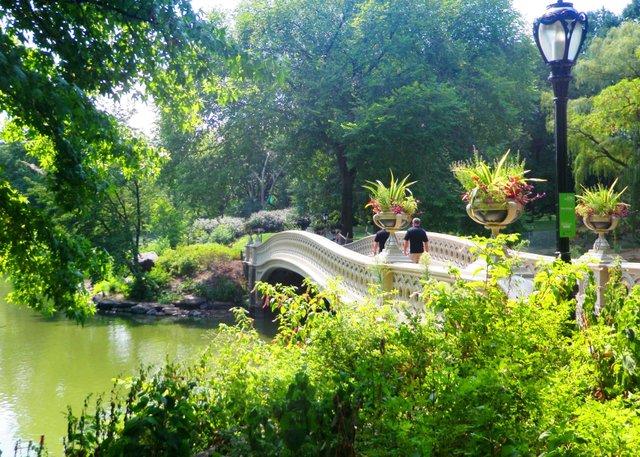 Bridge - Stroll thru Central Park