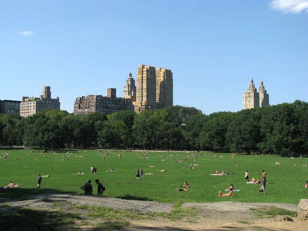 Best E Bike >> Top 7 Picnic Spots in Central Park