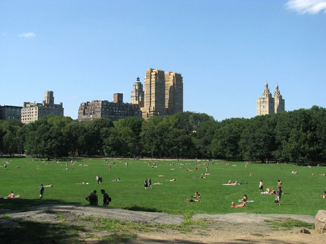 Sheep Meadow View