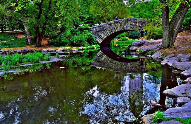 central park's gapstow bridge