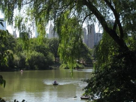Pond Scenery