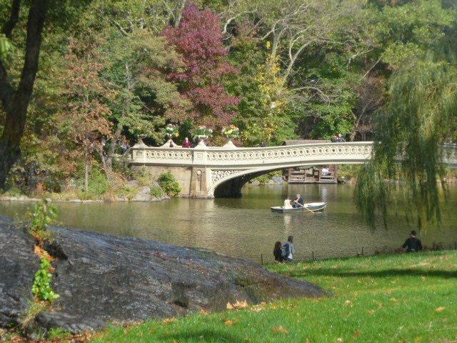 Photo entry: Bridge