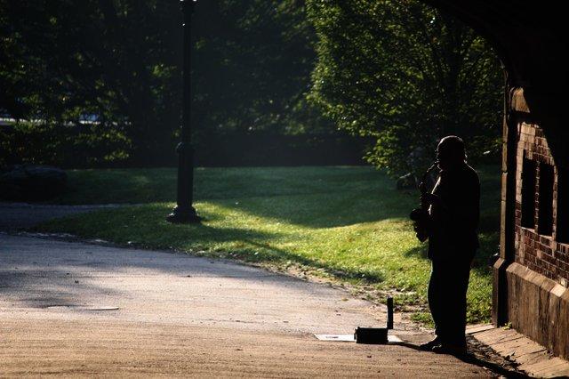The Soloist..Central Park.New York..