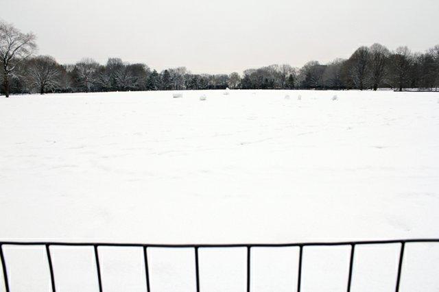White ballfields
