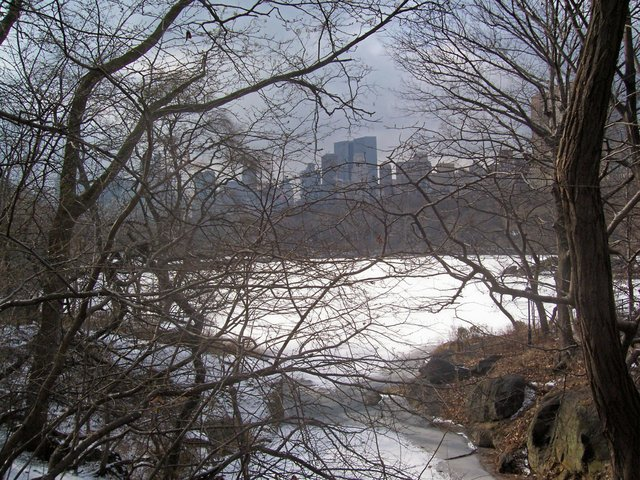 Central Park and the snow