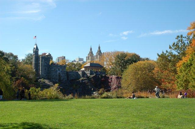 Central Park V