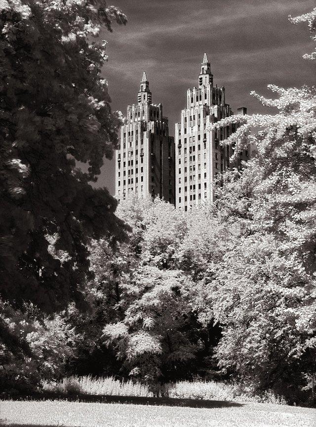 1New York Central Park003.jpg