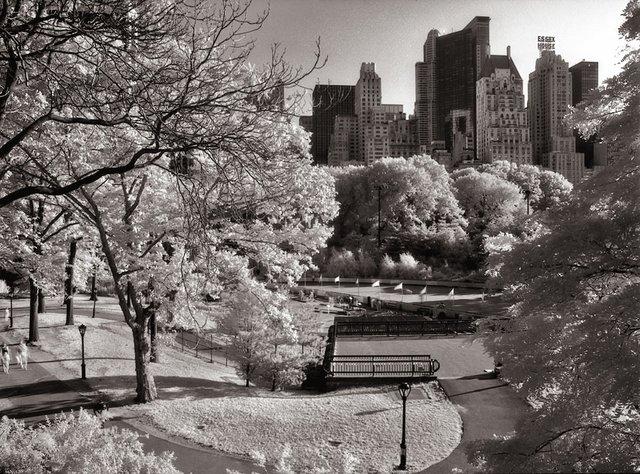 4New York Central Park047.jpg