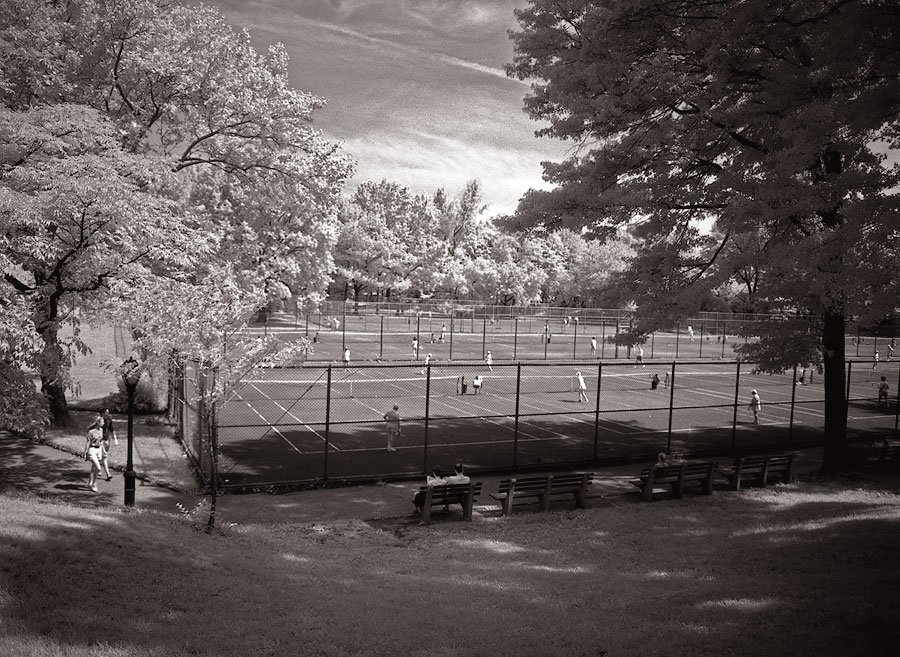 5New York Central Park004.jpg