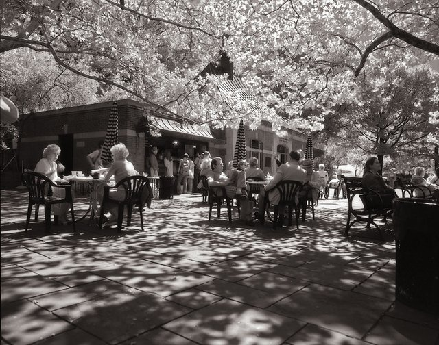 5New York Central Park012.jpg