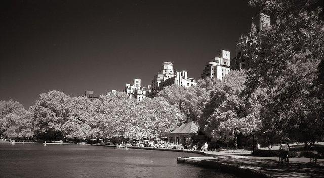 7New York Central Park021.jpg