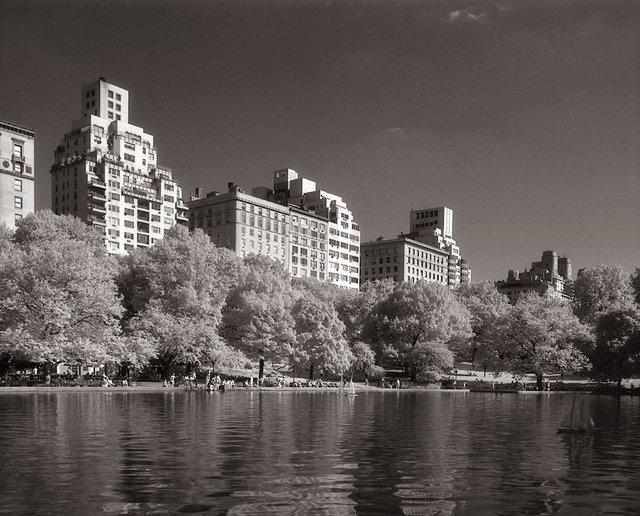 8New York Central Park031.jpg