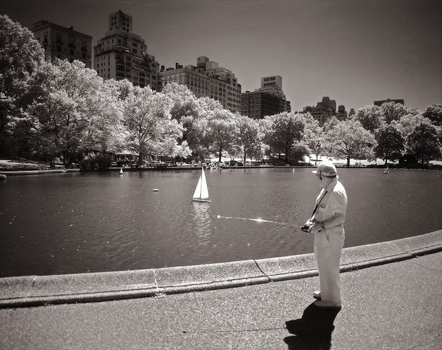9New York Central Park007.jpg