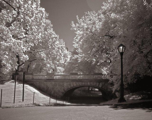 10New York Central Park008.jpg