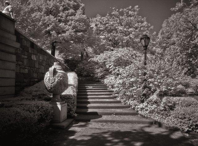 11New York Central Park036.jpg